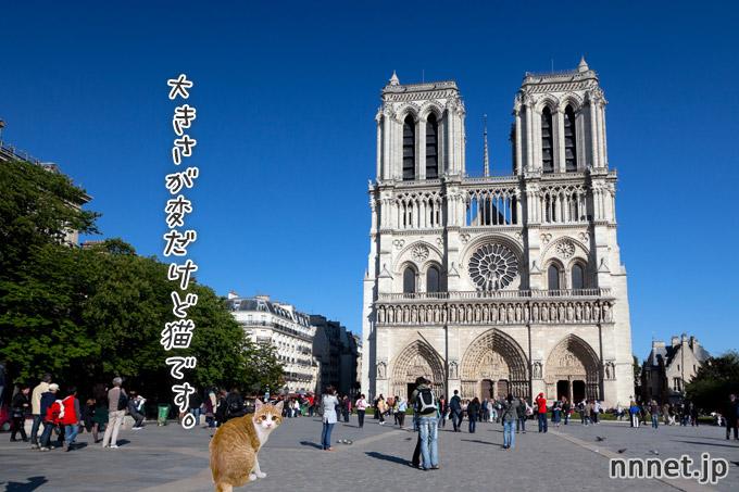 【フランス・パリ】ノートルダム大聖堂 に猫が行ってみた♪