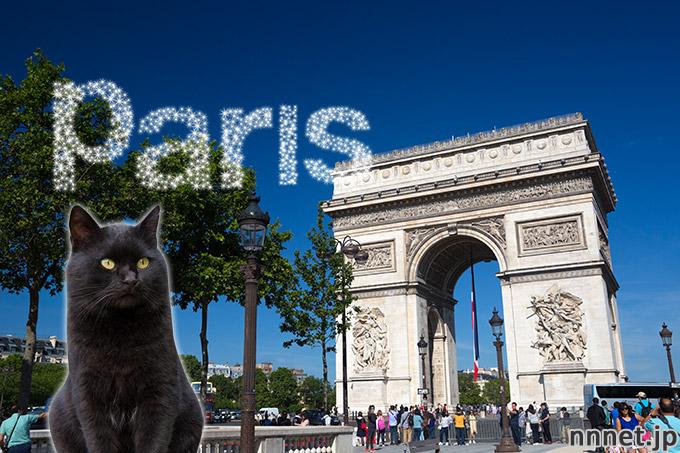 【フランス・パリ】エトワール凱旋門 に猫が行ってみた♪