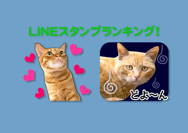 LINEスタンプ「いろんな茶トラ♪」人気ランキング!