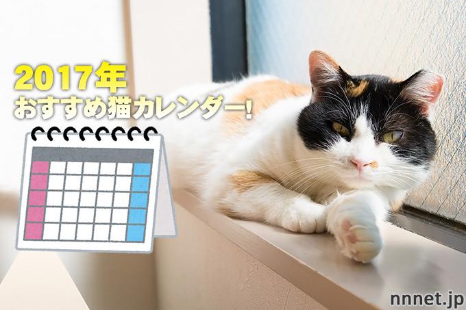 2017年おすすめ猫カレンダー!