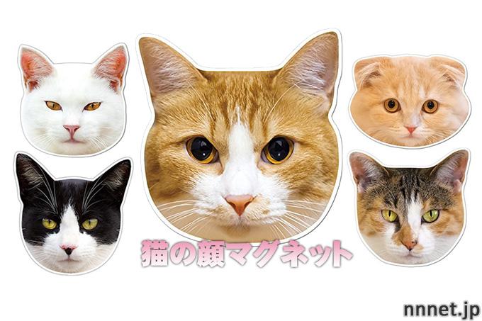 kmag かわいい猫の顔マグネットをご紹介!