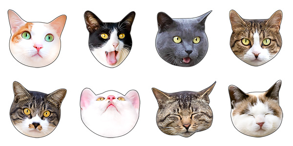 Lineスタンプに かわいい猫顔 肉球 登場 猫ねこネット 世界