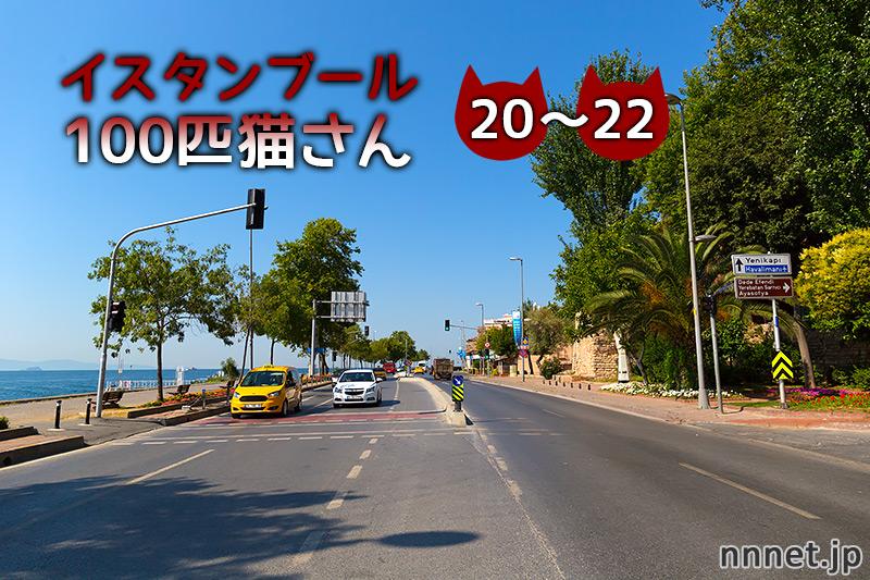 【連載】イスタンブール100匹猫さん 20~22匹目「路地裏の3匹の猫」