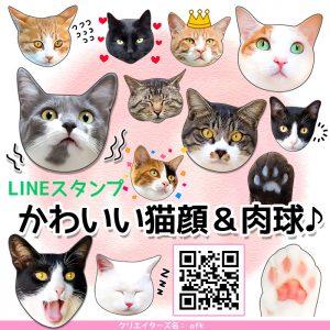 かわいくてリアルな猫のメッセージが届く!LINEスタンプシリーズに「かわいい猫顔&肉球♪」登場!