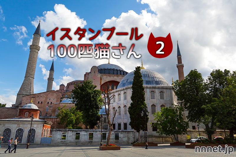 【連載】イスタンブール100匹猫さん 2匹目「溝にはまるチャトラくん」