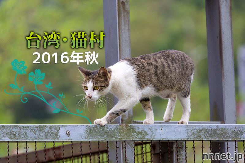 猫村・ホウトンの駅舎まわり~【連載】台湾・猫村を旅する①2016年秋~