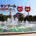 熟睡していた長毛さんたち~【連載】イスタンブールの100匹猫さん 43~44匹目