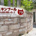 墓地にいたキジ白さん【連載】イスタンブールの100匹猫さん 79匹目