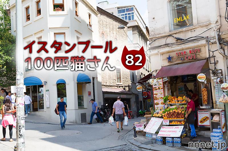 ザ・三毛猫さんを追跡!【連載】イスタンブールの100匹猫さん 82匹目