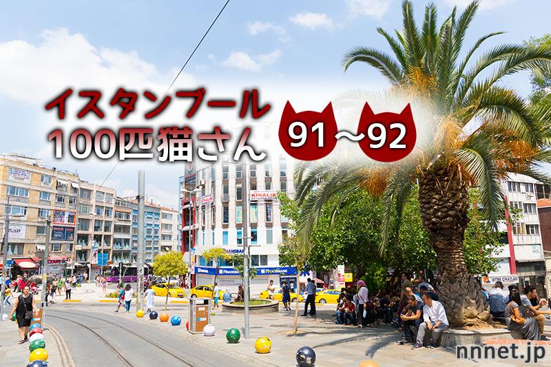 お店の前にいたキジトラ&茶白さん【連載】イスタンブールの100匹猫さん 91~92匹目