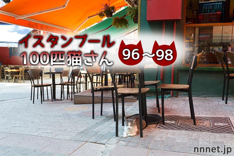 カフェにいた、なんとなく大きな猫たち【連載】イスタンブールの100匹猫さん 96~98匹目