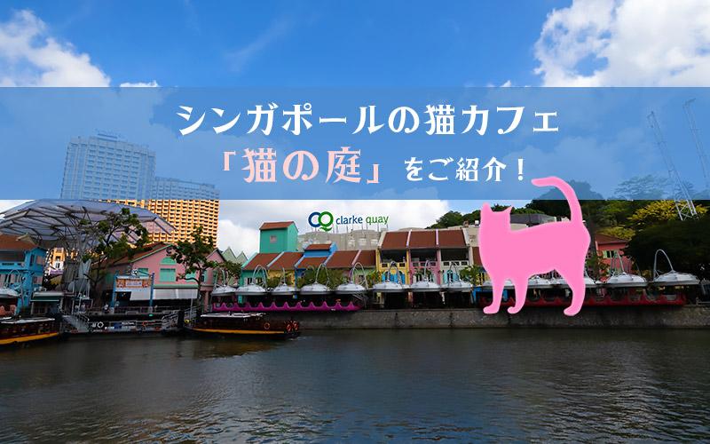 シンガポールの猫カフェ「猫の庭」に行ってきました!